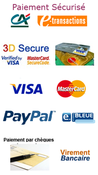 logo etransaction