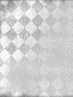 Brod Star, coupon Aïda 5.5 pts / cm, 30 X 40 cm, coloris damier gris